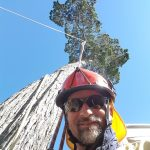 Teja from teja's tree services Brisbane northside.
