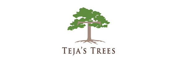Tejas Tree Services Brisbane North Logo